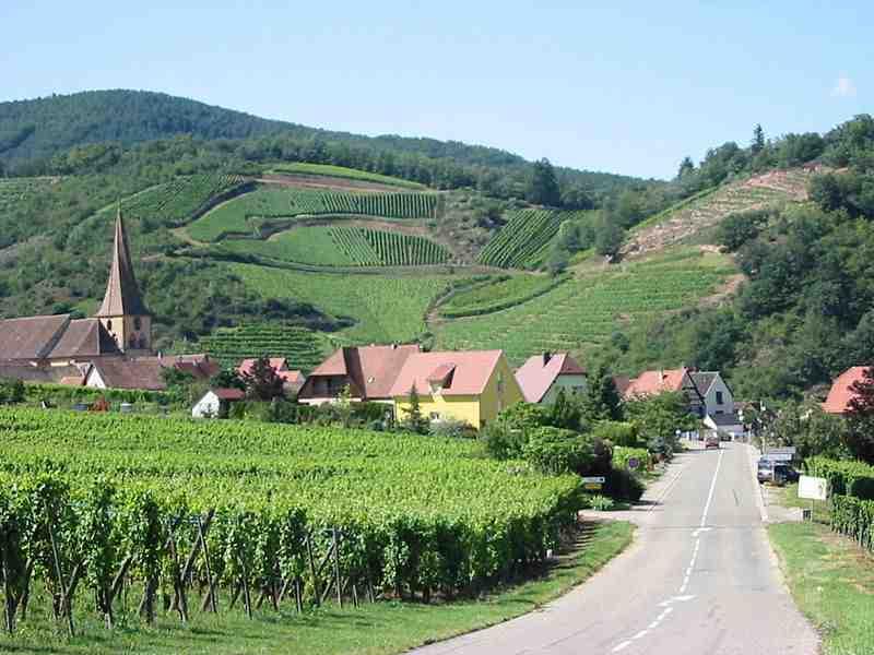 Un petit verre de vin d'Alsace ?